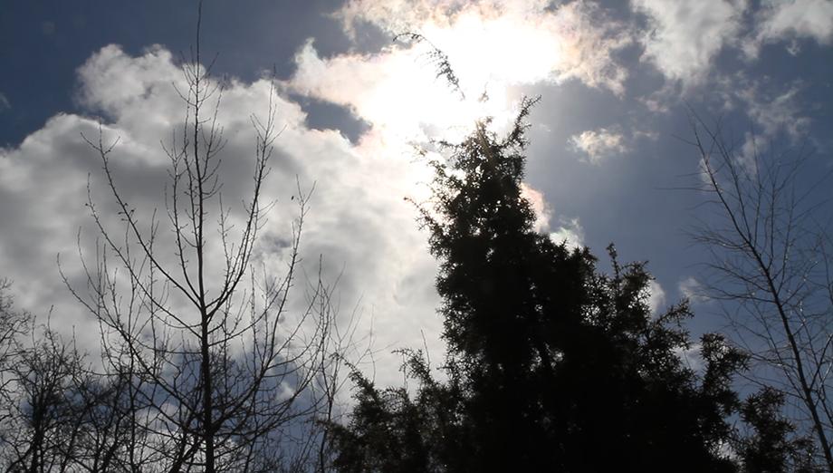 Sininen taivas, jossa muutamia valkoisia pilviä, joiden takaa paistaa aurinko. Kuvan alareunasta pilkistää esiin lehdettömien puiden latvoja ja yhden kuusen latva.