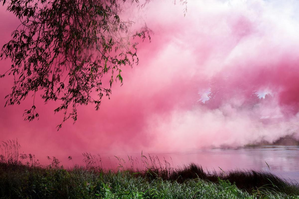 Klas Eriksson: Forza Rosa Fluff